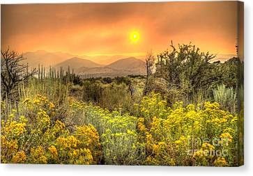 Smoke In The Air Canvas Print by Dianne Phelps