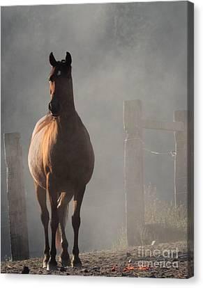Smoke Canvas Print by Rod Giffels