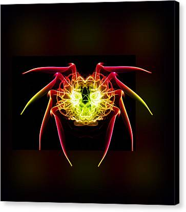 Smoke Spider 1 Canvas Print by Steve Purnell