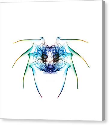 Smoke Spider 2 Canvas Print