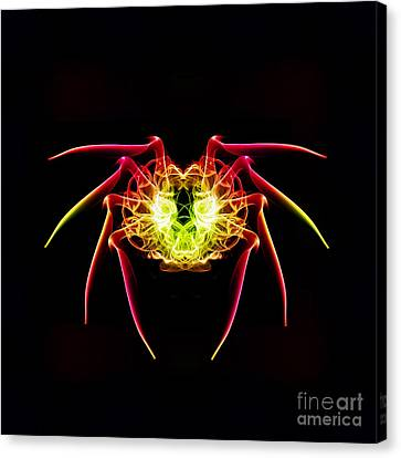 Smoke Spider Canvas Print by Steve Purnell
