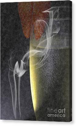 Smokey  Canvas Print by Brian Roscorla