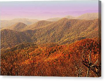 Smokey Mountain Drive Canvas Print - Smokey Mountains by Will Burlingham
