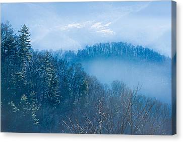 Smokies In Blue Canvas Print