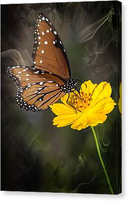 Smoking Beauty Butterfly Canvas Print by Michael Moriarty