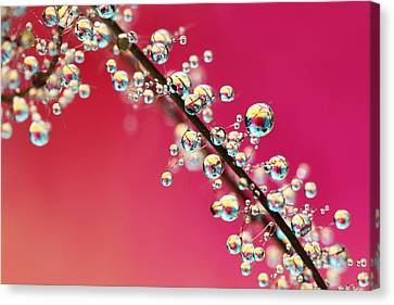 Canvas Print featuring the photograph Smoking Pink Drops II by Sharon Johnstone