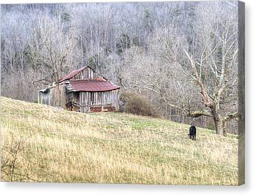 Smoky Mountain Barn 2 Canvas Print by Douglas Barnett