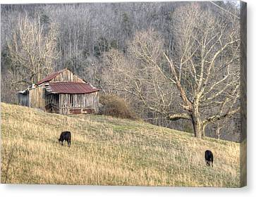 Smoky Mountain Barn 3 Canvas Print by Douglas Barnett