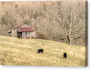 Smoky Mountain Barn 6 Canvas Print by Douglas Barnett