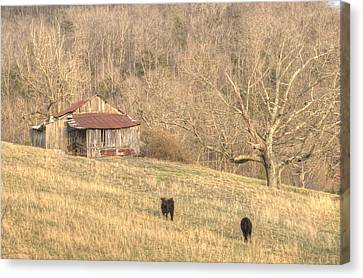 Smoky Mountain Barn 8 Canvas Print by Douglas Barnett