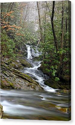 Smoky Mountain Beauty Canvas Print