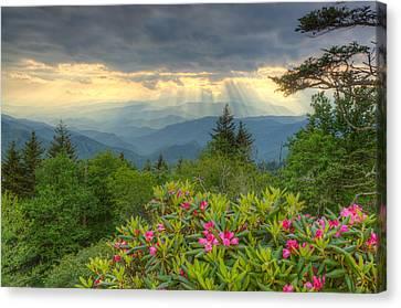 Mountain Grandeur Canvas Print