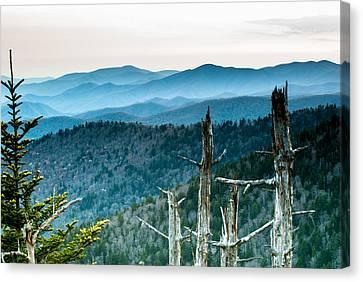 Smoky Mountain Overlook Canvas Print