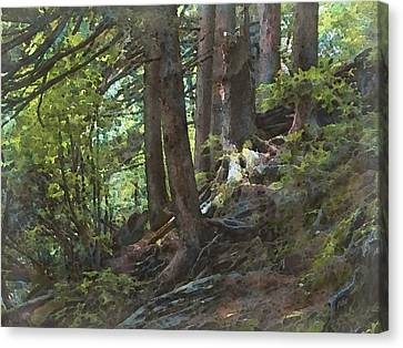 Canvas Print - Smoky Mountain Slope by Philip White