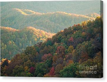 Smoky Mountain View Canvas Print