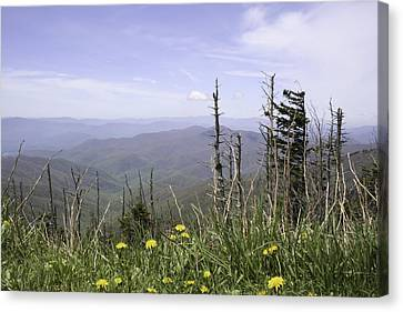 Gatlinburg Tennessee Canvas Print - Smoky Mountain View Tennessee by Erin Cadigan
