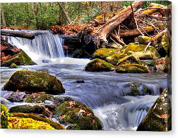 Smoky Mountain Waterfall Canvas Print by Craig T Burgwardt