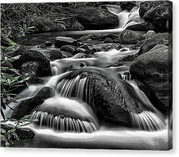 Smoky Mountains Cascades Canvas Print