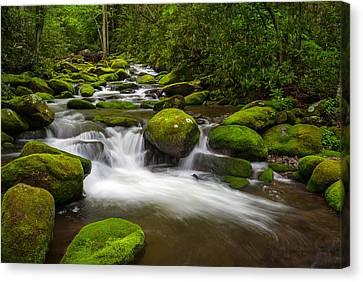 Gsmnp Canvas Print - Smoky Mountains Paradise - Great Smoky Mountains Gatlinburg Tn by Dave Allen