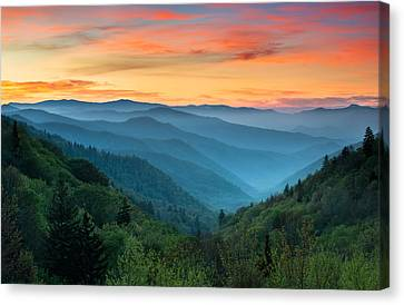 Smoky Mountains Sunrise - Great Smoky Mountains National Park Canvas Print by Dave Allen