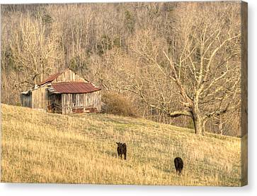Smoky Mountian Barn 7 Canvas Print by Douglas Barnett