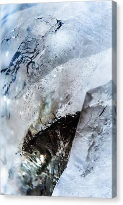 Smoky Quartz Crystal. Vertical Canvas Print by Jenny Rainbow