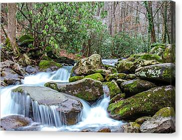Smoky Stream Canvas Print