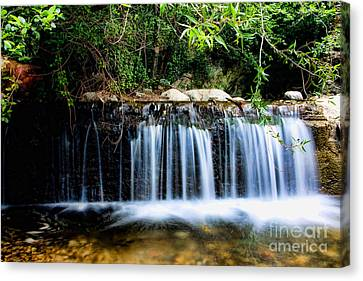 Smooth Flow Canvas Print by Bedros Awak