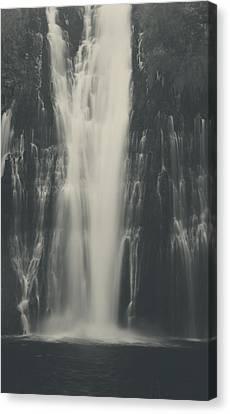 Smooth Canvas Print by Laurie Search