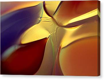 Smooth Moves Canvas Print by Omaste Witkowski