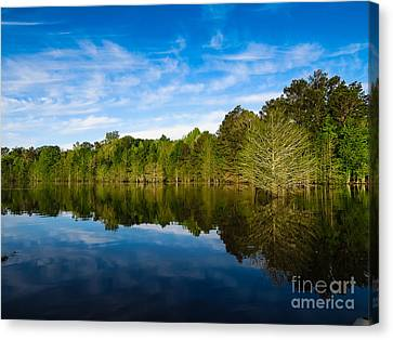 Smooth Reflection Canvas Print
