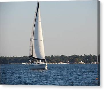 Smooth Sailing Carolina Canvas Print