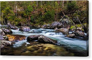 Smoothing Agent Canvas Print by Mark Lucey