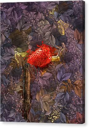 Snail Sory - S14c Canvas Print