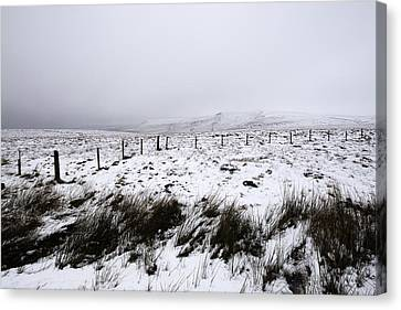 Snake Pass Canvas Print by Ollie Taylor