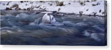 Snake River - Summit County - Colorado Canvas Print by Ellen Heaverlo