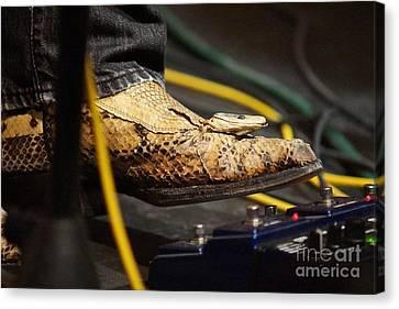 Snakeskin Boot Canvas Print by Lynda Dawson-Youngclaus