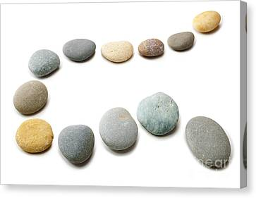 Snaking Line Of Twelve Pebbles Steps Isolated Canvas Print by Colin and Linda McKie