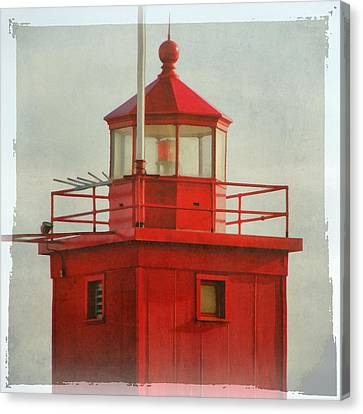 Snapshot Of Red Canvas Print by Michelle Calkins