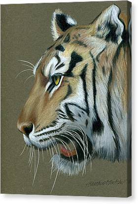 Snarl Canvas Print by Heather Mitchell