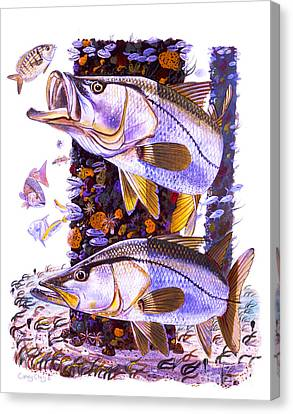 Snook Piling Canvas Print by Carey Chen