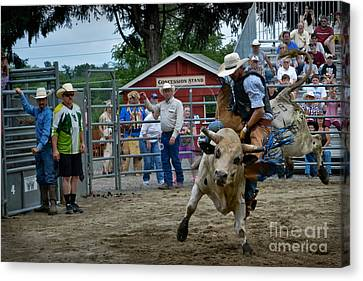 Cattle Run Canvas Print - Snot Bubble Rider by Gary Keesler