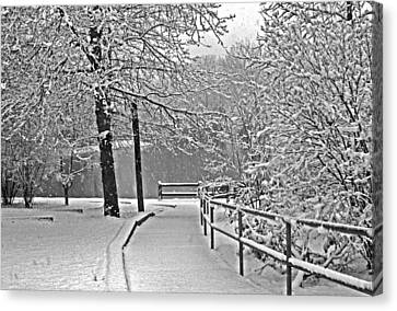 Canvas Print featuring the photograph Snow Along The Path by Andy Lawless