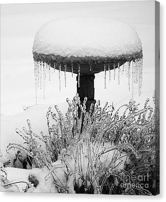 Snow And Ice Served-up Canvas Print