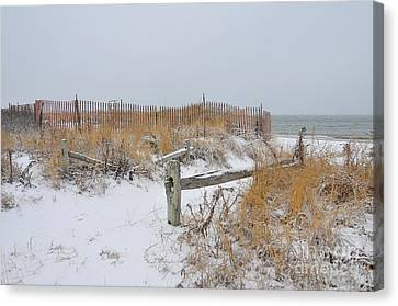 Snow And Sand Canvas Print by Catherine Reusch Daley