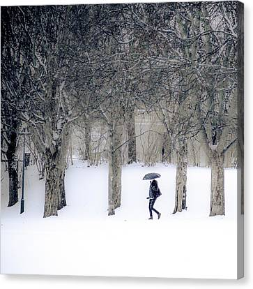 Woman With Umbrella Walking In Park Covered With Snow Canvas Print