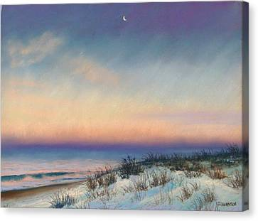Snow At Bay Head Canvas Print by Joan Swanson
