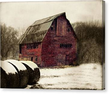 Snow Bales Canvas Print by Julie Hamilton