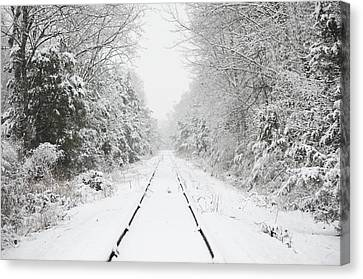 Snow Bound Canvas Print by Nancy Edwards