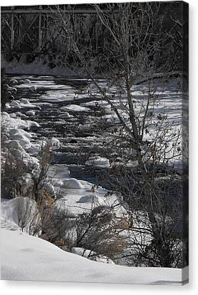 Snow Capped Stream Canvas Print
